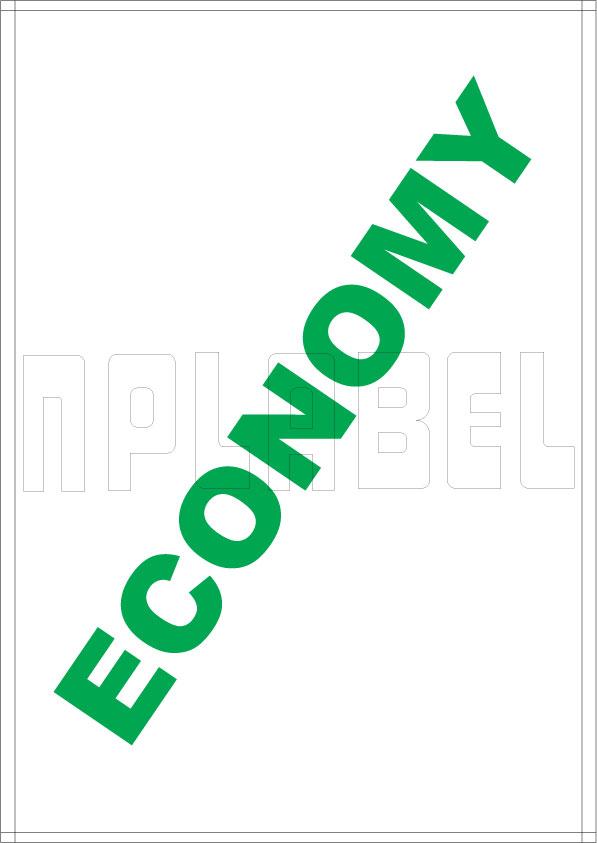 ESC1001 Multipurpose A4 Label Sheets